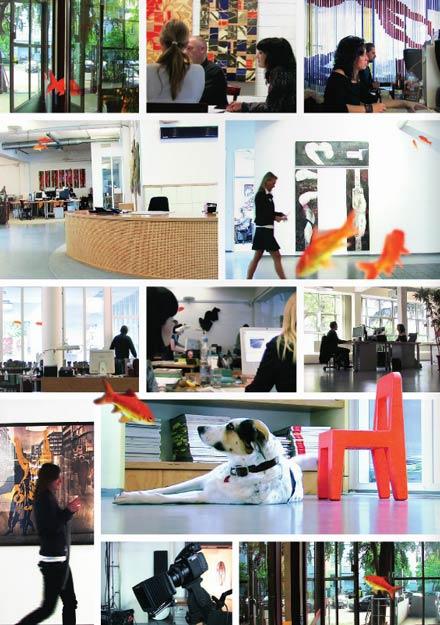 Webdesign Düsseldorf ist mehr als nur schöner Schein